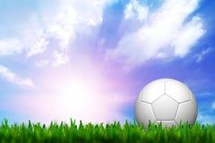 fotbollgräsgreen Royaltyfri Foto