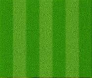 Fotbollgrästextur Arkivfoton