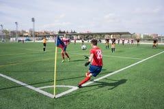 Fotbollhörnspark arkivfoton