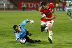 Fotbollmålvakten sparar ett mål Royaltyfria Foton