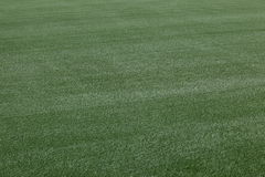 fotbollpitchfotboll Arkivfoton