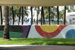 Fotbollsfan som firar i Miami Beach Arkivfoton