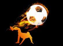 Fotbollspelare med bollbrandbakgrund Fotografering för Bildbyråer