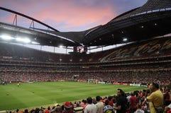 Fotbollstadion Royaltyfria Bilder