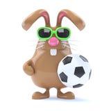 fotbollstjärna för kanin 3d Arkivbilder