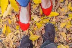 foten av en man och en flicka skos i skor som står på de asp- sidorna arkivbild