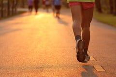 Foten av löpare i afton tänder Royaltyfria Bilder