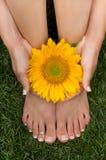 foten gräs pedicured royaltyfri foto