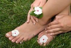 foten gräs pedicured royaltyfri bild