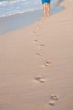 Foten promenerar kusten, fot fotografering för bildbyråer