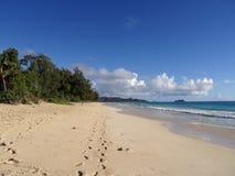 Foten skrivar ut banan i sanden på den Waimanalo stranden Arkivbild