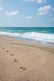 Foten skrivar ut på stranden bredvid Blacket Sea i Turkiet Royaltyfri Fotografi
