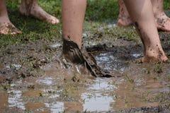 foten smutsar ner Fotografering för Bildbyråer