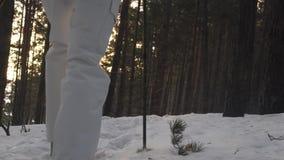 fotfoten fuktar fotvandra att gå långsam rörelse Snövinterlandskap Rekreationaktivitet Feriesemesterturism stock video