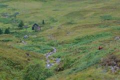 Fotgängare i skotsk Skotska högländerna som stiger ned till bothy Shenavall Arkivfoto