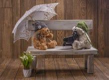 Fotógrafo dos ursos de peluche do luxuoso Foto de Stock