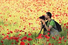 Fotógrafo no campo da papoila Fotografia de Stock Royalty Free