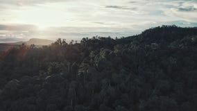 Foto aérea da floresta úmida, Bornéu do zangão, Malásia fotografia de stock royalty free