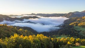 Foto aérea da névoa grossa que cobre a floresta e o lago na paisagem do amanhecer imagens de stock