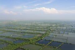 Foto aérea da plantação inundada do arroz fotografia de stock