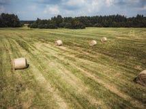 Foto aérea del abejón de Hay Rolls en el campo de trigo, rodeada con los bosques - Sunny Summer Day, apariencia vintage corrige imágenes de archivo libres de regalías