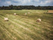 Foto aérea del abejón de Hay Rolls en el campo de trigo, rodeada con los bosques - Sunny Summer Day, apariencia vintage corrige fotos de archivo