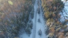 Foto aérea del camino del invierno en el bosque almacen de video