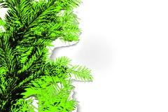 Foto abstrata de ramos coníferos na cor verde do UFO ilustração royalty free