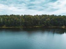 Foto aerea del fuco delle pecore vecchie dell'albero che crescono in acqua del tourquoise, Russia immagini stock