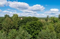 Foto aerea della foresta e mulino a vento in Fojutowo Immagine Stock