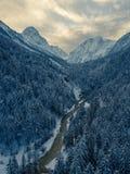 Foto aerea della valle del ghiacciaio e della foresta innevata f della foresta fotografia stock