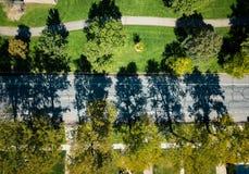 Foto aerea delle ombre dell'albero fotografia stock