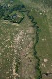 Foto aerea, foresta, prato Immagine Stock