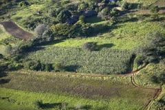 Foto aeree di trascuratezza della tutela di Lewa e di alloggio nel Kenya, Africa Fotografie Stock