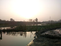 foto agradável por Bangladesh Foto de Stock Royalty Free