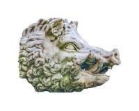 Foto aislada escultura salvaje de la cabeza del cerdo Imágenes de archivo libres de regalías