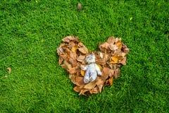 Foto al aire libre del oso de peluche que se sienta en la forma del corazón Fotografía de archivo libre de regalías