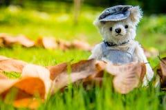 Foto al aire libre del oso de peluche que se sienta en la forma del corazón Foto de archivo
