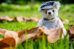 Foto al aire libre del oso de peluche que se sienta en la forma del corazón Fotos de archivo libres de regalías