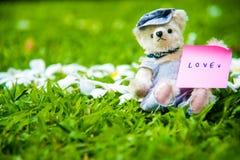 Foto al aire libre del oso de peluche que se sienta en la yarda Fotos de archivo