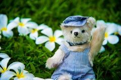 Foto al aire libre del oso de peluche que se sienta en la yarda Imagenes de archivo
