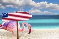 Foto alta vicina del fenicottero con la condizione della bandiera di U.S.A. sulla spiaggia C'? chiari mare e cielo blu nei preced immagine stock libera da diritti