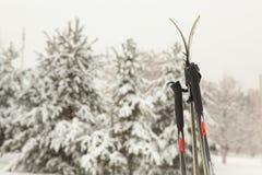 Foto alta vicina dello sci sul parco della copertura di neve di inverno Immagine Stock Libera da Diritti