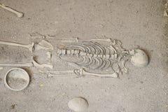 Foto auf Lager - Erforschung des alten menschlichen Skeletts Stockfoto