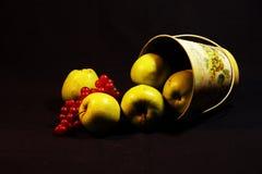 Foto av äpplen i gula och röda färger arkivfoton