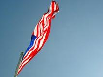 Foto av amerikanska flaggan som vinkar i linda Royaltyfri Bild