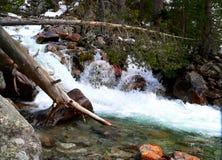 Foto av den snabba floden i de Kaukasus bergen Royaltyfria Bilder