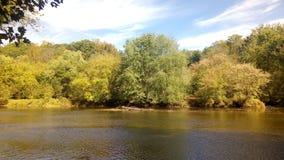 Foto av en liten vik i Delaware arkivbild