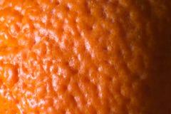 Foto av en orange tangerinhud, närbild, makro Arkivbild