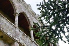 Gammalt slott, Soutomaior, Pontevedra, Galicia, Spanien royaltyfri bild